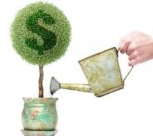 Быстрый финансовый рост: правильные бизнес идеи